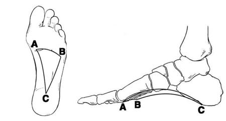 mi az artritisz a kezében térdízületi kezelés artrózis gonarthrosis