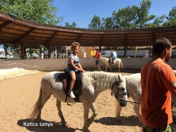 Katica_tanya3