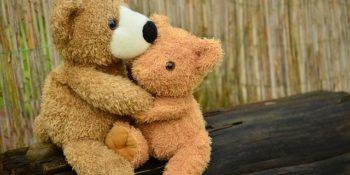 barátság-teddy