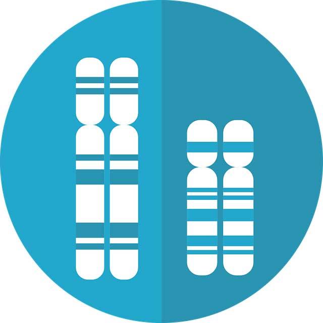 mire lehet jó a génszerkesztés