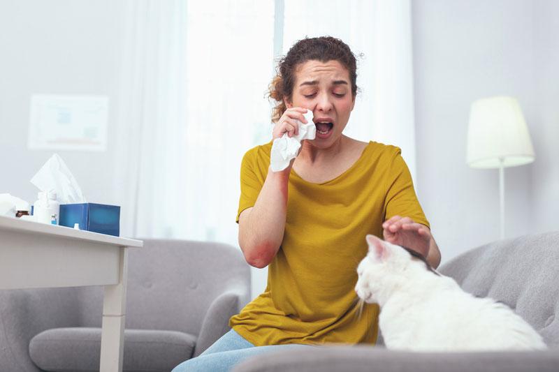 cicaallergia miatt trüsszent egy nő