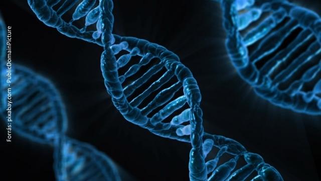 gén Farmakogenomika