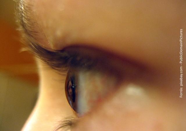 látás