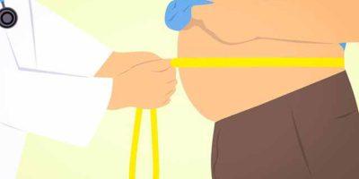 baktériumokkal az elhízás ellen