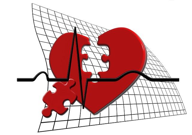 szív, puzzle, EKG