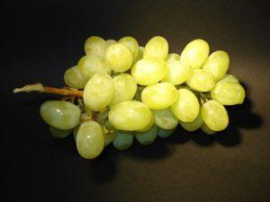 szőlő-grapes-16614_640
